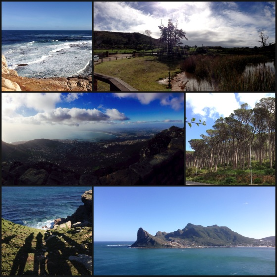 From Right to Left: Cape Point, Botlierskop Safari, Top of Table Mountain, Kloof Street, Cape Point, Hout Bay